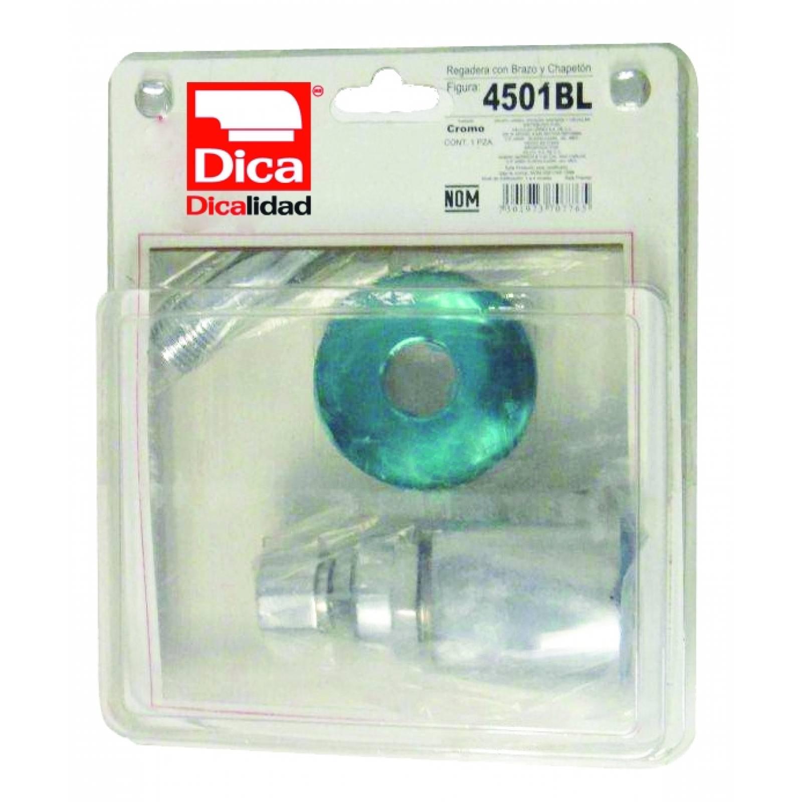 Regadera de cebolla cromo con brazo y chapetón 4501BL DICA